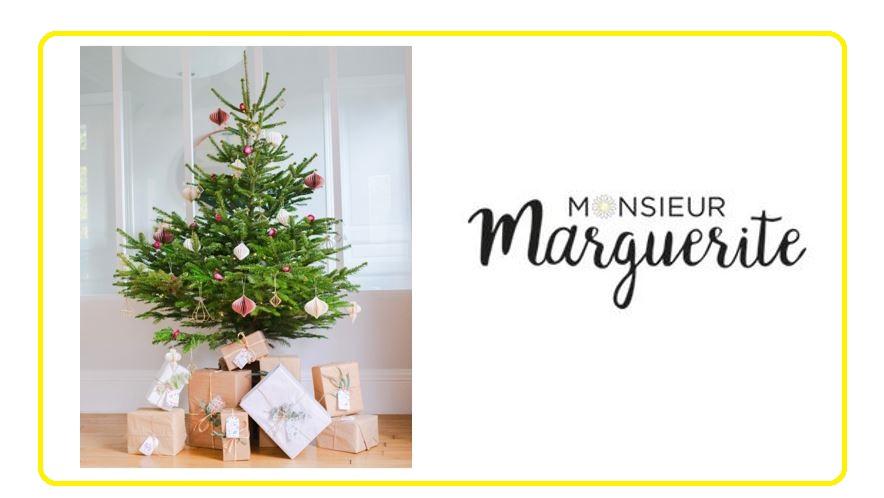 Com Monsieur Marguerite v2
